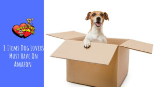 8 Items Dog Lovers Must Have On Amazon